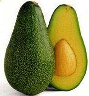 180px-avocado.jpeg